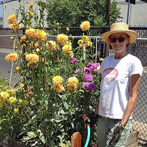 Cyndi Hubach on Watching Her Community Garden Grow