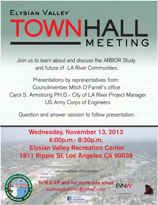 2013town-hall-flyer